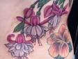 side-flowers